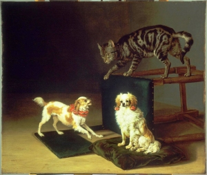 Cat and Spanish Dogs Paulus Potter 1652